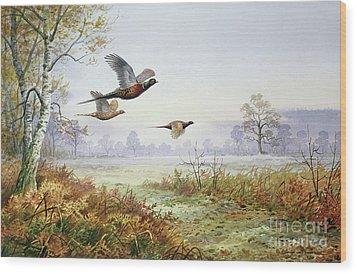 Pheasants In Flight  Wood Print