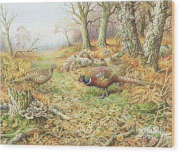 Pheasants With Blue Tits Wood Print by Carl Donner