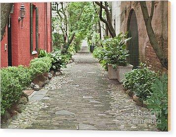 Philadelphia Alley Charleston Pathway Wood Print by Dustin K Ryan