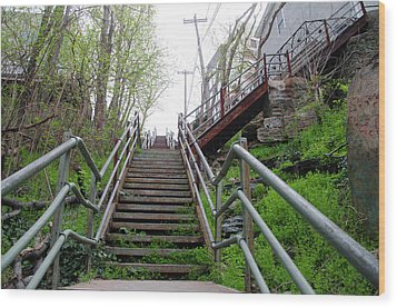 Wood Print featuring the photograph Philadelphia - Roxborough Avenue Steps by Bill Cannon
