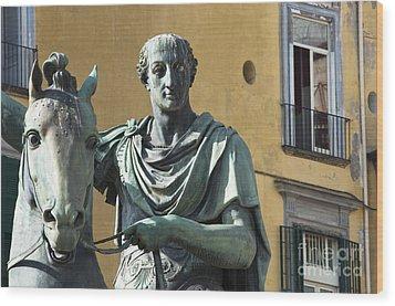 Piazza Del Plebiscito Wood Print by Andrew  Michael