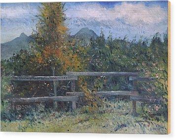 Picket Fence Near Heidelberg Western Cape South Africa Wood Print by Enver Larney
