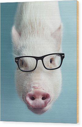 Pickle The Pig I Wood Print by Eli Warren