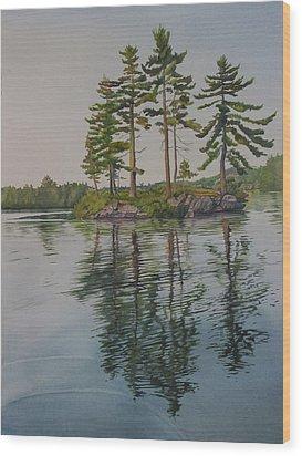 Picnic Island At Dawn Wood Print by Debbie Homewood