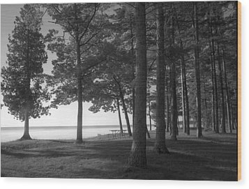 Picnic Table View-newport State Park Wood Print by Stephen Mack
