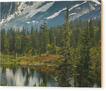 Picture Lake Vista Wood Print by Mike Reid