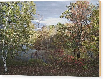 Picture Perfect Wood Print by David and Lynn Keller