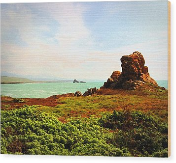 Wood Print featuring the photograph Piedras Blancas 3 by Timothy Bulone