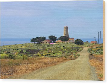 Piedras Blancas Historic Light Station - Outstanding Natural Area Central California Wood Print by Christine Till