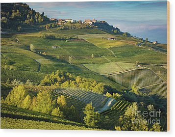 Wood Print featuring the photograph Piemonte Countryside by Brian Jannsen