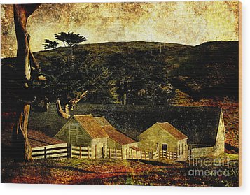 Pierce Point Ranch 18 . Texture Wood Print by Wingsdomain Art and Photography