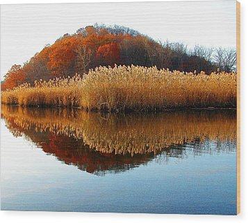 Piermont Backwater Wood Print