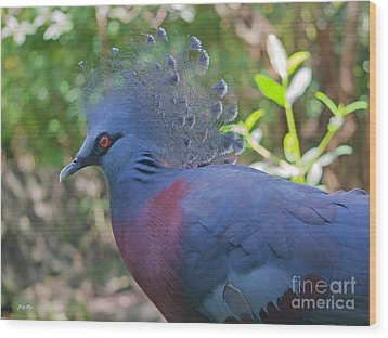 Pigeon Elegante Wood Print