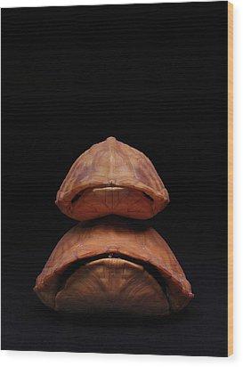 Piggyback Ride Wood Print by Adam Long