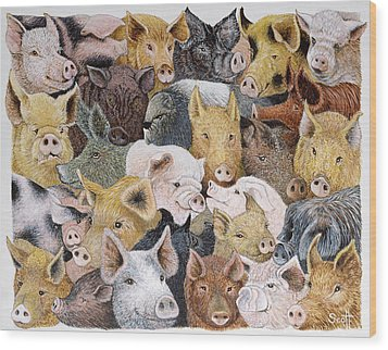 Pigs Galore Wood Print by Pat Scott