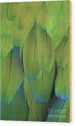 Piha Oe I Ka Maikai Wood Print by Sharon Mau