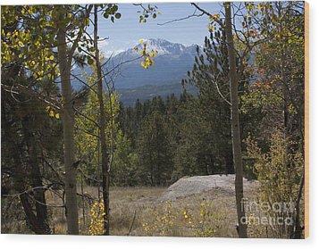 Pikes Peak Framed Aspens Landscape Wood Print by Marta Alfred