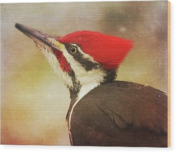 Wood Print featuring the photograph Pileated Woodpecker With Snowfall by Heidi Hermes