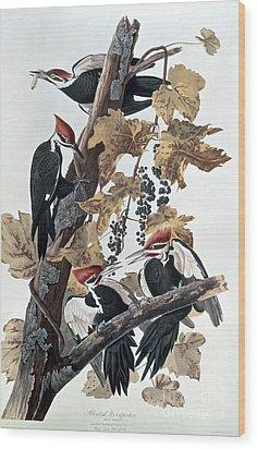 Pileated Woodpeckers Wood Print by John James Audubon