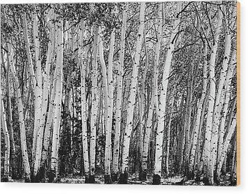 Pillars Of The Wilderness Wood Print by James BO Insogna