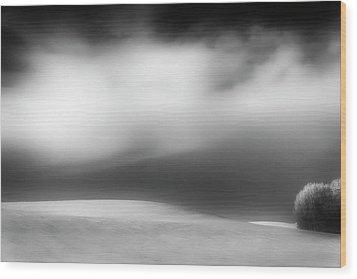 Wood Print featuring the photograph Pillow Soft by Dan Jurak
