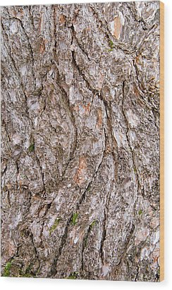 Wood Print featuring the photograph Pine Bark Abstract by Christina Rollo