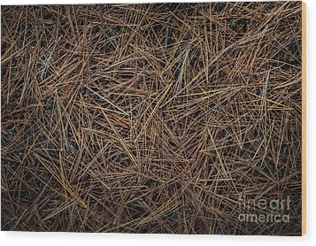 Wood Print featuring the photograph Pine Needles On Forest Floor by Elena Elisseeva