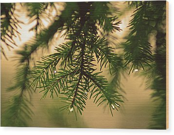 Wood Print featuring the photograph Pine by Robert Geary