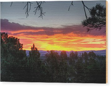 Pine Sunrise Wood Print