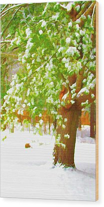 Pine Tree Covered With Snow 1 Wood Print by Lanjee Chee