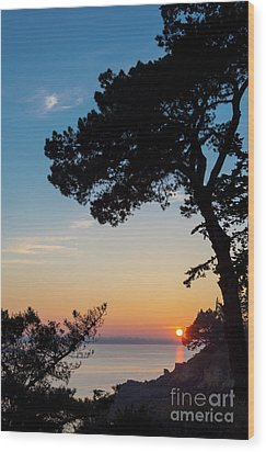 Wood Print featuring the photograph Pine Tree by Delphimages Photo Creations