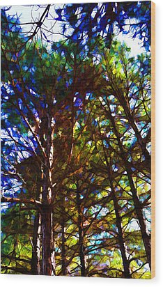 Pine Trees In Abstract 1 Wood Print