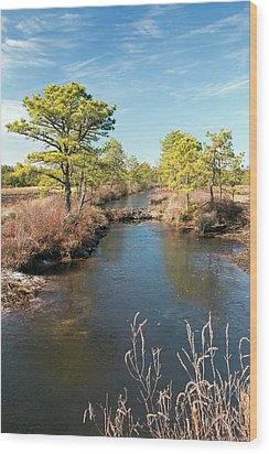 Pinelands Water Way Wood Print