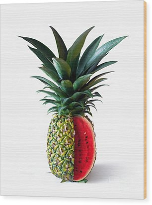 Pinemelon 2 Wood Print by Carlos Caetano