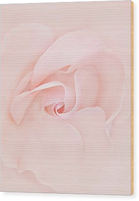 Pink Abstract Rose Flower Wood Print by Jennie Marie Schell