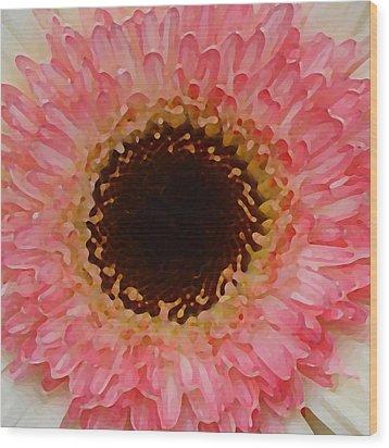 Pink And Brown Gerber Center Wood Print by Amy Vangsgard