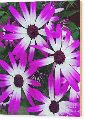 Pink And White Flowers Wood Print by Vizual Studio
