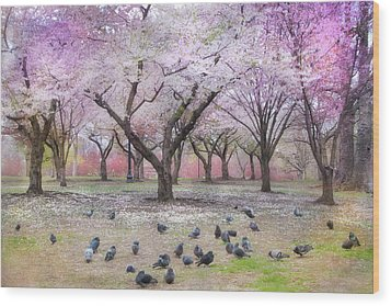 Wood Print featuring the photograph Pink And White Spring Blossoms - Boston Common by Joann Vitali