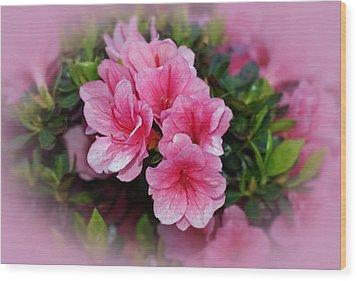 Pink Azaleas Wood Print by Sandy Keeton
