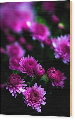 Pink Beauty Wood Print by Cherie Duran