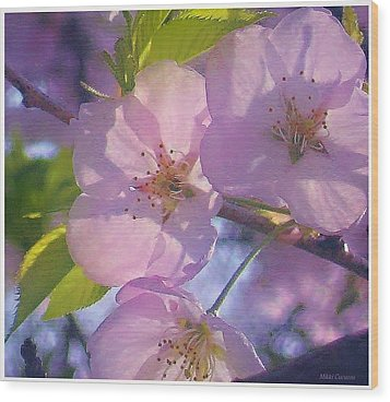 Pink Blossoms 2 Wood Print by Mikki Cucuzzo