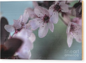 Wood Print featuring the photograph Pink Blossoms by Jim and Emily Bush