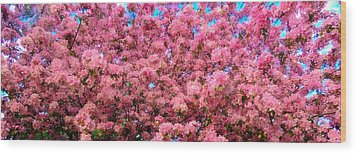 Pink Blossoms Of Spring Wood Print