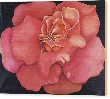 Pink Blush Wood Print by Jordana Sands