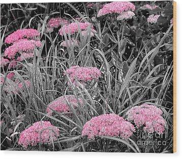 Pink Carved Cowslip Wood Print
