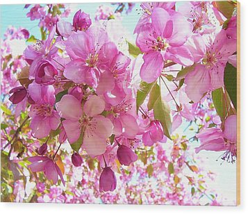 Pink Cherry Blossoms Wood Print