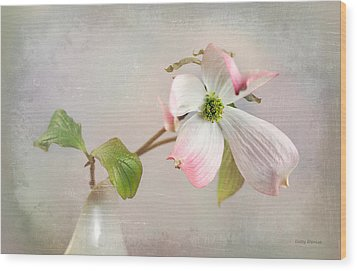 Pink Cornus Kousa Dogwood Blossom Wood Print by Betty Denise