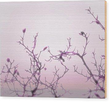Pink Dawn Wood Print by Ann Powell