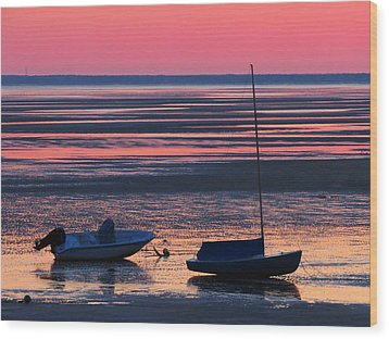 Wood Print featuring the photograph Pink Dawn by Dianne Cowen