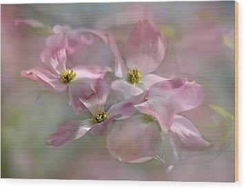 Pink Dogwood Wood Print by Ann Bridges